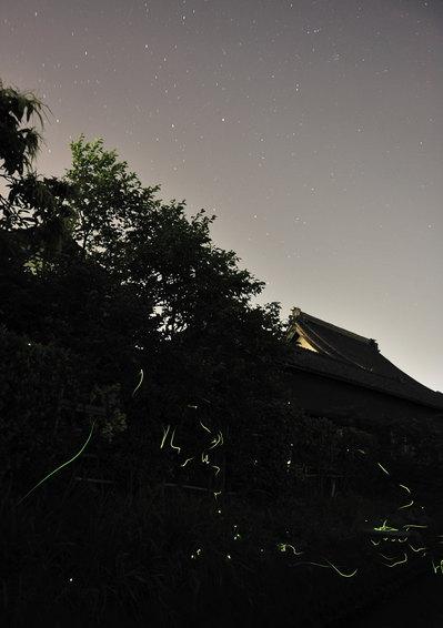 20100611B.jpg