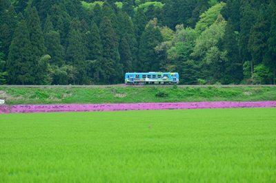 DSC_7251.jpg